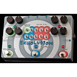 PIGTRONIX Echolution PHI Delay Modulation